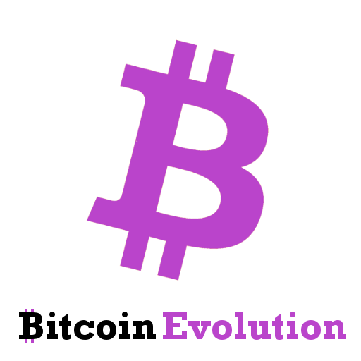 bitcoin evolution review 2020